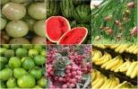 Điểm danh những loại quả thuần Việt không bao giờ nhập khẩu từ TQ