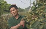 """Ông Cảnh """"bắt"""" nhãn mất mùa ra hoa trái vụ"""