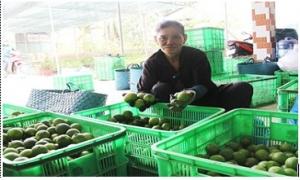 Chủ trang trại được vay tín chấp đến 3 tỷ đồng