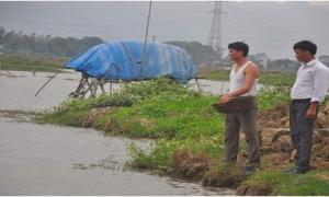 """Thủ lĩnh nông dân 8X """"ghi điểm"""" với dự án lúa - cá hàng trăm triệu"""