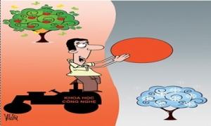 Công nghệ giúp thoát được mùa, mất giá