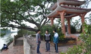 Những cây đa lịch sử ở Hưng Yên