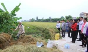 Hội Nông dân tỉnh Hưng Yên: Đa dạng hóa trong công tác bảo vệ môi trường