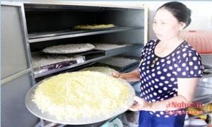 Trồng nghệ sạch thu 200 triệu đồng/ha ở Nghệ An