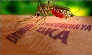 Virus Zika vẫn tiếp tục lan rộng
