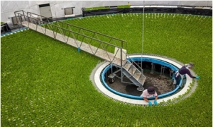 Kỳ thú trồng rau trên chiếc mâm xoay siêu khổng lồ