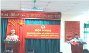 Hội nghị Ban Chấp hành Hội Nông dân tỉnh Hưng Yên lần thứ 13 ( khóa VIII)