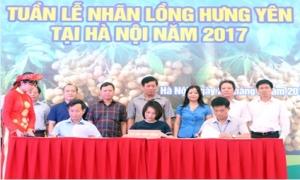 Khai mạc Tuần lễ Nhãn lồng Hưng Yên tại Hà Nội