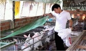 """Làm giàu ở nông thôn: 9X nuôi thỏ, """"bỏ túi"""" hơn 20 triệu/tháng"""