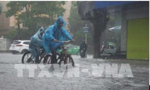 Từ chiều và đêm 24/7, Đông Bắc Bắc Bộ có mưa to kèm gió giật mạnh