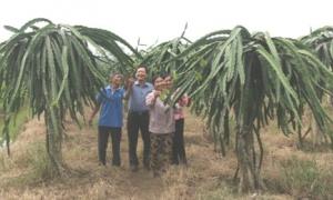 Tiếp sức cho nông dân phát triển sản xuất, kinh doanh