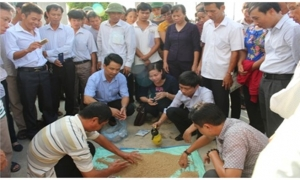 Chế phẩm giúp tăng năng suất và hiệu quả trong nông nghiệp