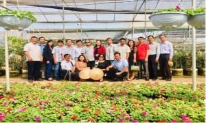 Hội giúp sức nông dân trồng hoa ở Xuân Quan thành tỷ phú