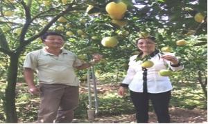 """Công tác phối hợp giữa Hội Nông dân huyện và Ngân hàng NN&PTNT huyện Kim Động về """"Chính sách tín dụng phát triển nông nghiệp nông thôn"""""""