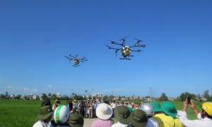 Hàng trăm nông dân xem máy bay không người lái phun thuốc