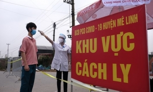 Những người đến chợ hoa Mê Linh từ ngày 20/3 đến nay cần liên hệ ngay với cơ quan y tế