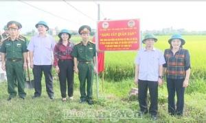 """Triển khai trồng """"Hàng cây quân dân"""" tại các huyện Ân Thi, Tiên Lữ"""