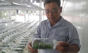 Nâng đỡ để nông dân thành doanh nhân