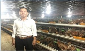 Choáng trước trại gà đẻ 330.000 con được nuôi trong... điều hòa