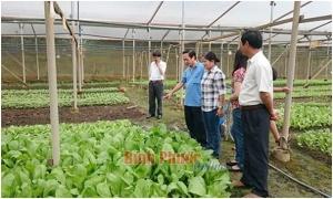 Hưng Yên dồn thửa, đổi ruộng gần 29.000 ha đất nông nghiệp