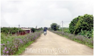 Hưng Yên gấp rút hoàn thành xây dựng xã nông thôn mới