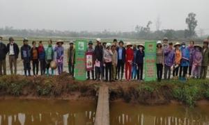 Hưng Yên: Tập huấn về kỹ thuật bón phân cho lúa theo phương pháp canh tác lúa cải tiến - SRI cho cán bộ, hội viên nông dân