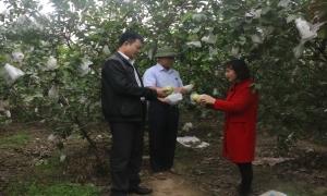 HND xã Hoàn Long: Cùng nông dân phát triển sản xuất, nâng cao đời sống